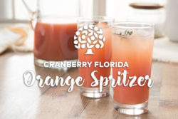image of cranberry florida orange spritzer